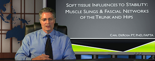 Soft Tissue Influences to Stability: Muscle Slings & Fascial Networks of the Trunk and Hips-0